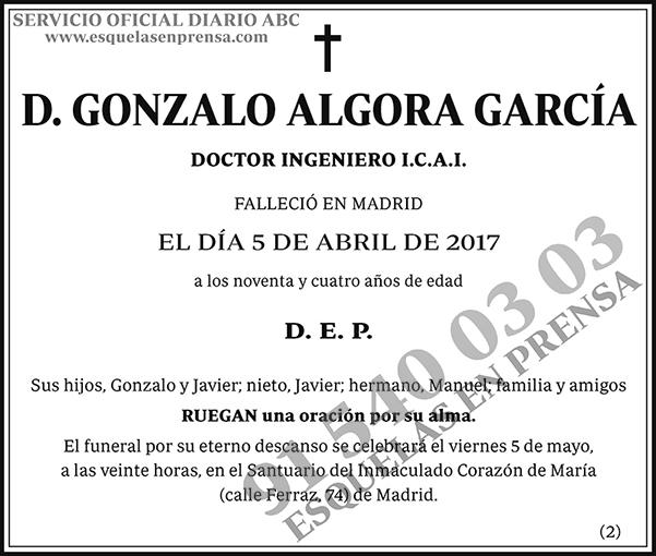 Gonzalo Algora García